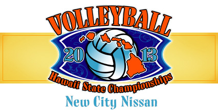 Banner-2013-volleyball